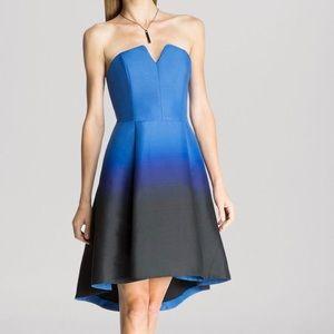 Halston Heritage Strapless Ombre Dress